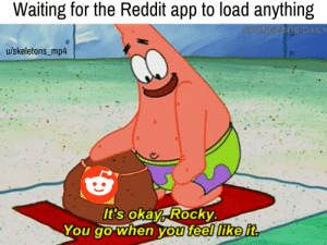 Reddit, Rocky, and SpongeBob: Waiting for the Reddit app to load anything  SPONGEBOB-DAILY  u/skeletons_mp4  It's okay, Rocky.  You go when you feel like it I got nothing but time