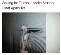 Follow @trumpmeetstheinternet for the greatest compilation of Trump memes on IG!: Waiting for Trump to Make America  Great Again like Follow @trumpmeetstheinternet for the greatest compilation of Trump memes on IG!