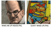 Png, Wake, and Inside: WAKE ME UP INSIDE.PNG  (CANT WAKE UP).PNG https://t.co/g5uFW0ura1