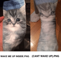 meirl: WAKE ME UP INSIDE. PNG (CANT WAKE UP) PNG meirl