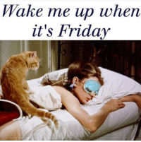 Friday, It's Friday, and Memes: Wake me up when  it's Friday