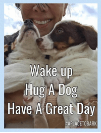Bunnies, Homeless, and Memes: Wake up  Hug A Dog  Have A Great Day  HAPLACETOBARK New Year, New Faces💕 Animal rescue never ends.  The sea of homeless pets is continual, every day, of every year.   With each homeless litter of puppies brought into animal controls we pull from, we always offer a free spay/neuter to the parents, if they can be located & always take the parents.  No mother or father ever left behind. Every dog, cat, bunny, pig, etc, that comes into our program, is spay/neutered.  This will be a very thoughtful week for me, as I will be mapping out my year ahead.  Things are going to be a bit different & my hope is for a bigger & better year, saving more lives than ever.  But it will take a more innovative approach to do so.   We are at crossroads & after 17 years, this has to be a game changer.  But I will stay positive & keep moving forward💕 Have A Beautiful Day Everyone!!!  #hugadog #everylifematters #aplacetobark #dogrescue #spayandneutersaveslives #nomotherleftbehind #bepositivestaystrong