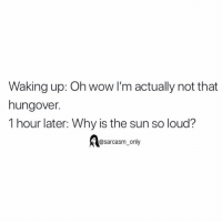 SarcasmOnly: Waking up: Oh wow l'm actually not that  hungover.  1 hour later: Why is the sun so loud?  @sarcasm_ only SarcasmOnly