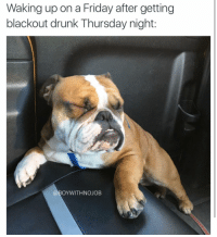 """Drunk, Friday, and Funny: Waking up on a Friday after getting  blackout drunk Thursday night:  BOY WITHNOJOB """"Im sorry I can't hear you the sun is too bright"""" (@huffthemagicbulldog)"""