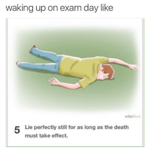 Death, Day, and Lie: waking up on exam day like  ey  wikiHo  5  Lie perfectly still for as long as the death  must take effect.