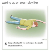 Death, Day, and Lie: waking up on exam day like  wikiHo  Lie perfectly still for as long as the death  must take effect.