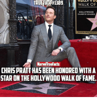 Congrats @prattprattpratt! 👏🏻 You deserve it! After all, you're the motherf**king Star-Lord. ⭐️: WALK OF  HOLLYWOOD  CHAMBER OF COMMERCE  HOLLY  WWW.WALKO FFA  MarvelTneFacts  CHRIS PRATTHAS BEEN HONORED WITH A Congrats @prattprattpratt! 👏🏻 You deserve it! After all, you're the motherf**king Star-Lord. ⭐️