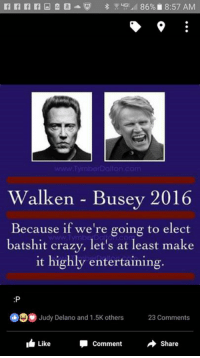 Walken: Walken Busey 2016  Because if we're going to elect  batshit crazy, let's at least make  it highly entertaining.  Judy Delano and 1.5K others  23 Comments  Like  Share  Comment