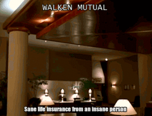 """Life, Tumblr, and Blog: WALKEN MUTUAL  Sane lite insurance from an insane person life-insurancequote: WALKEN MUTUAL At Walken Mutual we have a saying """"You're talking to me all wrong. Last guy who talked to me like that got stabbed with a soldering iron"""" http://YourLifeSolution.com"""