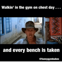 Gym, Taken, and Chest Day: Walkin' in the gym on chest day.  and every bench is taken  Cafunnygymbabes Who are you people!?