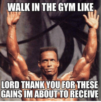 Praise tha lawd of gains!: WALKIN THE GYM LIKE  LORD THANK YOU FOR  THESE  GAINS MABOUTTORECEIVE Praise tha lawd of gains!