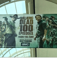 Do you like our banner for @comic_con this year? sdcc17 . Follow @walkingdead_amc for daily twd updates 🆙, memes 🚀and cast 📸 . thewalkingdead twdfamily walkingdead maggiegreene laurencohan michonne carol maggierhee truth real chandlerriggs carlgrimes lucille negan glenn twdseason7 ripglenn twd twdcast: WALKING  100  EPISODES  THANK YDU, FANS!  NEW SEASON  OCTOBER Do you like our banner for @comic_con this year? sdcc17 . Follow @walkingdead_amc for daily twd updates 🆙, memes 🚀and cast 📸 . thewalkingdead twdfamily walkingdead maggiegreene laurencohan michonne carol maggierhee truth real chandlerriggs carlgrimes lucille negan glenn twdseason7 ripglenn twd twdcast