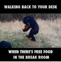 If you work in an office, especially if you work IT in an office, this has been you at some point.: WALKING BACK TO YOUR DESK  WHEN THERE'S FREE F00D  IN THE BREAK R00M If you work in an office, especially if you work IT in an office, this has been you at some point.