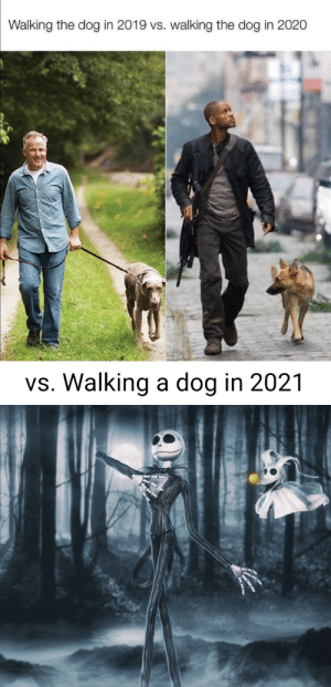 Walking the dog 3 different years by BulldogDX05 MORE MEMES: Walking the dog 3 different years by BulldogDX05 MORE MEMES