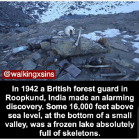 Creepy, Frozen, and Memes: walkingxsins  In 1942 a British forest guard in  Roopkund, India made an alarming  discovery. Some 16,000 feet above  sea level, at the bottom of a small  valley, was a frozen lake absolutely  full of skeletons Help me ( @creepy.fact ) hit 80k before February!!! 😬