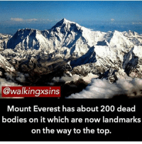 Memes, Mount Everest, and 🤖: @walkingxsins  Mount Everest has about 200 dead  bodies on it which are now landmarks  on the way to the top. Turn on my post notifications !!!