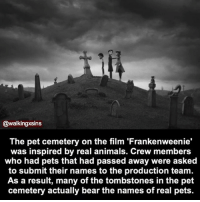 The Pet Cemetery On The Film Frankenweenie Was Inspired By Real Animals Crew Members Who Had Pets That Had Passed Away Were Asked To Submit Their Names To The Production Team As