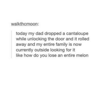 Dad, Family, and Time: walkthcmoon:  today my dad dropped a cantaloupe  while unlocking the door and it rolled  away and my entire family is now  currently outside looking for it  like how do you lose an entire melon Happens every time