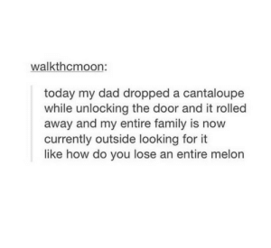 This is like a sfw version of that other post (you know the one): walkthcmoon:  today my dad dropped a cantaloupe  while unlocking the door and it rolled  away and my entire family is now  currently outside looking for  like how do you lose an entire melon This is like a sfw version of that other post (you know the one)