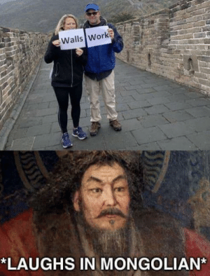build a wall, they said: Walls Work  *LAUGHS IN MONGOLIAN build a wall, they said