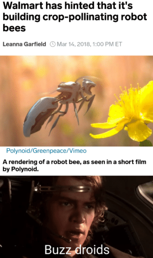 General Kenobee: Walmart has hinted that it's  building crop-pollinating robot  bees  Leanna Garfield Mar 14,2018, 1:00 PM ET  Polynoid/Greenpeace/Vimeo  A rendering of a robot bee, as seen in a short film  by Polynoid.  Buzz-droids General Kenobee