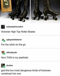 God, Aesthetic, and Victorian: walzerjahrhundert  Victorian High Top Roller Skates  ughgodwhatever  For the witch on the go  officialputin  Now THIS is my aesthetic  shuliee  god the two most dangerous kinds of footware  combined into one For the witch on the go!