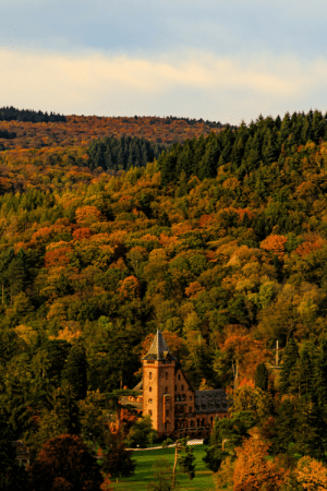 wanderlusteurope:Saareck Castle, a 19th century castle among the autumn forests, Saarland, Germany: wanderlusteurope:Saareck Castle, a 19th century castle among the autumn forests, Saarland, Germany