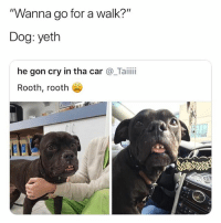 """Ironic, Dog, and Car: Wanna go for a walk?  Dog: yeth  """"  """"  he gon cry in tha car @_Taii  Rooth, rooth Fucth with it"""