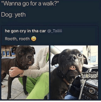 "So cute with that crooked smile! (via /r/BlackPeopleTwitter): Wanna go for a walk?""  Dog: yeth  he gon cry in tha car @_Taiii  Rooth, rooth So cute with that crooked smile! (via /r/BlackPeopleTwitter)"