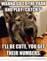 "Pick-up Pup will get you a girl: WANNA TO THE PARK  AND PLAY ""CATCH  ILLBECUTE, OU GET  THEIR NUMBERS.  FEEL UNLOVED? GO TO DAMNLOLCOM Pick-up Pup will get you a girl"
