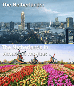 Want some tulips? by Sidt06 MORE MEMES: Want some tulips? by Sidt06 MORE MEMES