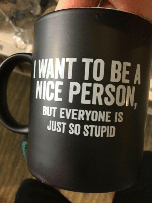 novelty-gift-ideas:  I Want to Be a Nice person Mug  : WANT TO BEA  NICE PERSON  BUT EVERYONE IS  JUST SO STUPID novelty-gift-ideas:  I Want to Be a Nice person Mug