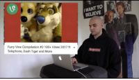 Vine, Tiger, and Vines: WANT TO  BELIEVE  Furry Vine Compilation #2100+ Vines 2017 ft  Telephone, Dash Tiger and More <p>oh no</p>