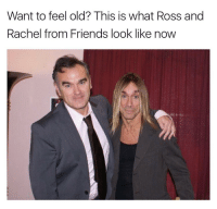 Wow I'm getting old: Want to feel old? This is what Ross and  Rachel from Friends look like now Wow I'm getting old