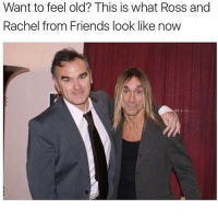 Ahah ah I love cupcakes guys they are great thank u Jesus for cupcakes: Want to feel old? This is what Ross and  Rachel from Friends look like now Ahah ah I love cupcakes guys they are great thank u Jesus for cupcakes