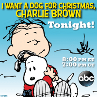 I Want a Dog for Christmas, Charlie Brown airs tonight on ABC Television Network!: WANTA DO  FOR CHRISTMAS  CHARLIE BROWN  Tonight!  8800 PM ET  7:00 PM CT  CO PNTS I Want a Dog for Christmas, Charlie Brown airs tonight on ABC Television Network!