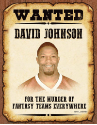 RIP (Credit: memesofnfl): WANTE  DAVID JOHNSON  FOR THE MURDER OF  FANTASY TEAMS EVERYWHERE  @NFL MEMES RIP (Credit: memesofnfl)