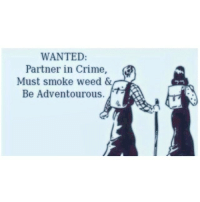 TAG your partner in crime!: WANTED  Partner in Crime  Must smoke weed &  Be Adventourous. TAG your partner in crime!