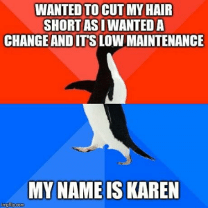 I'm pretty sure I'll be teased a lot at college,if I do it.: WANTED TO CUT MY HAIR  SHORT AS I WANTED A  CHANGE AND IT'S LOW MAINTENANCE  MY NAME IS KAREN  imgflip.com I'm pretty sure I'll be teased a lot at college,if I do it.
