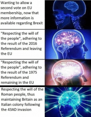 "Memes, Information, and The 1975: Wanting to allow a  second vote on EU  membership, now that  more information is  available regarding Brexit  ""Respecting the will of  the people"", adhering to  the result of the 2016  Referendum and leaving  the EU  ""Respecting the will of  the people"", adhering to  the result of the 1975  Referendum and  remaining in the EU  Respecting the will of the  Roman people, thus  maintaining Britain as an  Italian colony following  the 43AD invasion D E M O C R A C Y"