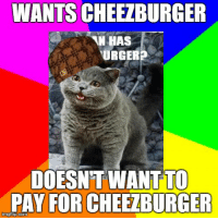 511388a6 4chan, Meme, and Annoying: WANTS CHEEZBURGER HAS URGER? DOESNT WANT TO PAY