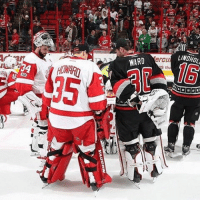 Detroit, Memes, and Respect: WARD  LINDHOL,  erCu  S th GoodGuyAlert Big shoutout to the Detroit RedWings and their fans for their concern for the well-being of Eddie Lack last night Respect @eddiethestork NHLDiscussion