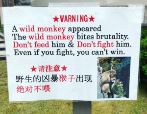 Monkey, Wild, and Fight: WARNING  A wild monkey appeared  The wild monkey bites brutality.  Don't feed him & Don't fight him.  Even if you fight, you can't win.  ★请注意★  野生的凶暴猴子出现  绝对不喂 When the enemy Winston starts popping off