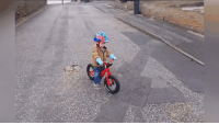 Funny, Slow Motion, and Bike: **WARNING GRAPHIC** - Child learning to ride bike caught in horrific slow motion wreck.