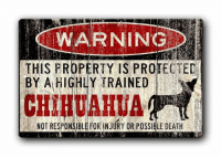 Chihuahua, Memes, and Death: WARNINGD  THIS PROPERTY IS PROTECTED  BY A HICHLY TRAINED  CHIHUAHUA  NOT RESPONSIBLE FOR INJURY OR POSSIBLE DEATH Be afraid... be very, very afraid...😮😅  Get this sign here => https://amzn.to/2RKTZHx