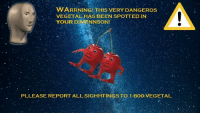 Been, All, and Vegetal: WARRNINGITHIS VERY DANGEROs  VEGETALHAS BEEN SPOTTEDIN  YOUR DIMENNSON!  PLLEASE REPORT ALL SIGHHTINGS TO 1-80Ö-VEGETAL