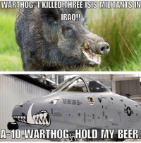 Beer, Isis, and Memes: WARTHOG: I KILLED THREE ISIS MILITANTS IN  IRAQ!!  A 10-WART HOG HOLD MY BEER Caption This 🏆 sa_alphaco military captionthis free militarystyle