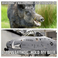 America, Beer, and Isis: WARTHOG IKILLED THREE ISIS MILITANTS IN  IRAQ!!  A-10-WARTHOGAHOLD MY BEER merica america usa