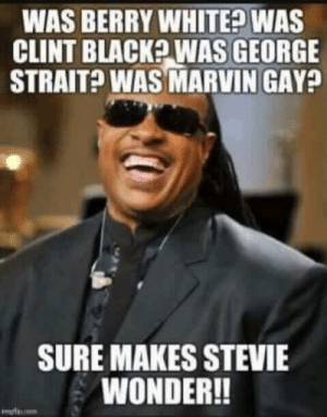 george strait: WAS BERRY WHITED WAS  CLINT BLACKP WAS GEORGE  STRAIT? WAS MARVIN GAY  SURE MAKES STEVIE  WONDER!!