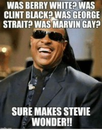 george strait: WAS BERRY WHITEP WAS  CLINT BLACK? WAS GEORGE  STRAIT? WAS MARVIN GAY?  SURE MAKES STEVIE  WONDER!!